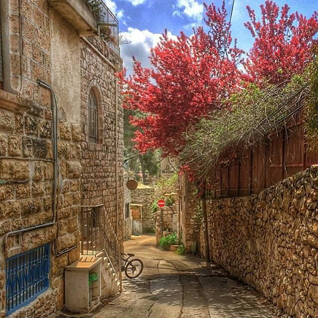 Ein Karem Jerusalem عين كارم قضاء القدس Road Sidewalk Ein Karem