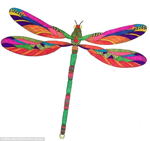 This Coloured In Image Of A Dragonfly Taken Out Animal Kingdom Shows How Colouring Truly Sparks Your Inner Creativity