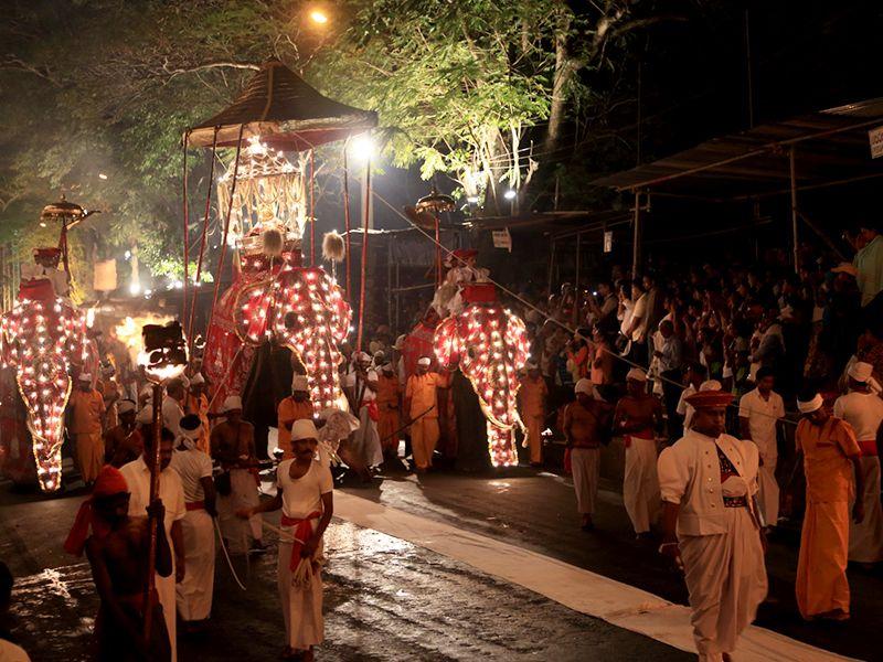 Kandy Perahera Festival in 2019 #srilanka#srilankatravel #kandy ...