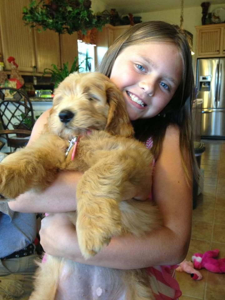 Our oldest granddaughter and our newest Doodle, Charlotte