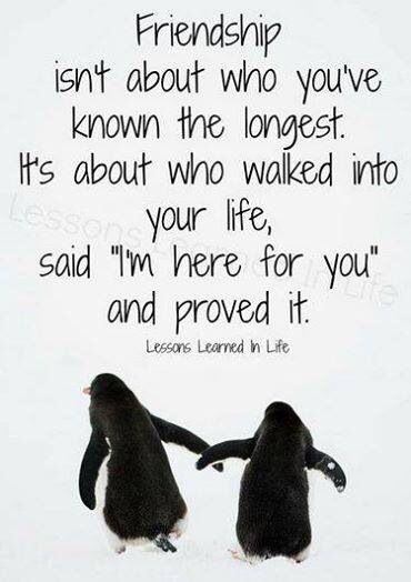 Friends Friends Quotes Best Friend Quotes Bff Quotes