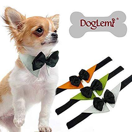 Tolles HochzeitsAccessoire für deinen Hund. Wer eine