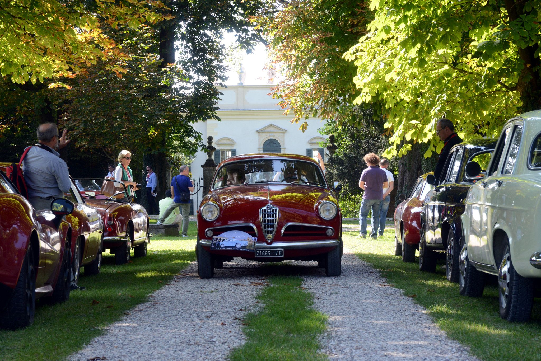 An Anniversary Pilgrimage for the Giulietta, Timeless at 60 - NYTimes.com