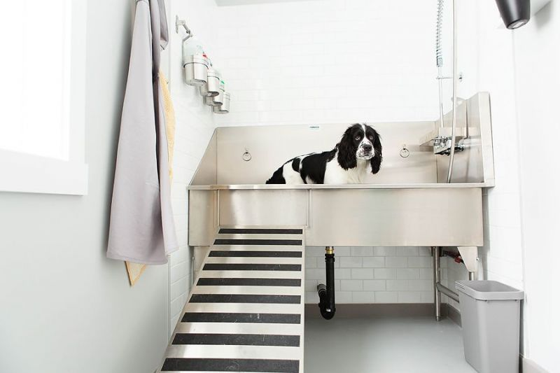 Ridalco Stainless Steel Dog Grooming Sink Dog Tub Dog