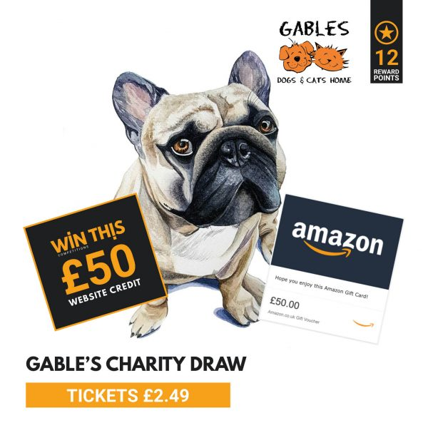 Cats Dogs Charity Prize 1 Pet Portrait By Rachel Selina Prize 2 50 Website Credit Prize 3 50 Amazon Voucher Draw To Take Pl Dog Charities Dog Cat Dogs