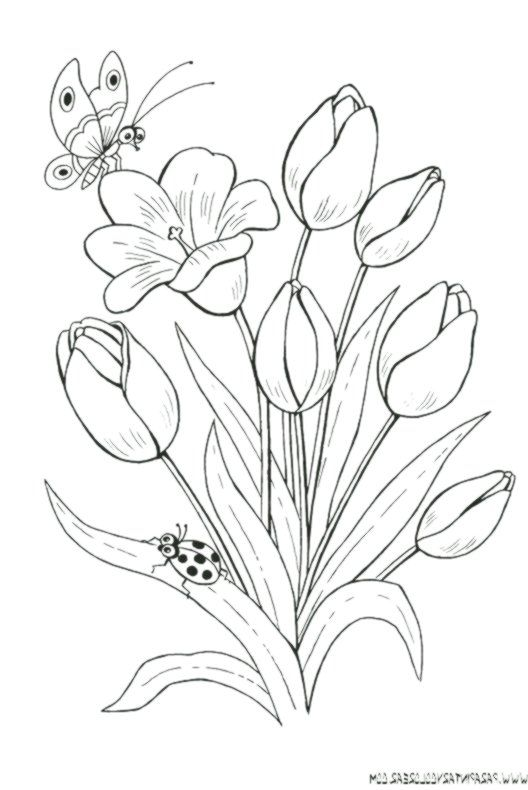 Zeichnungen Zum Malen Von Blumen Tulpen 019
