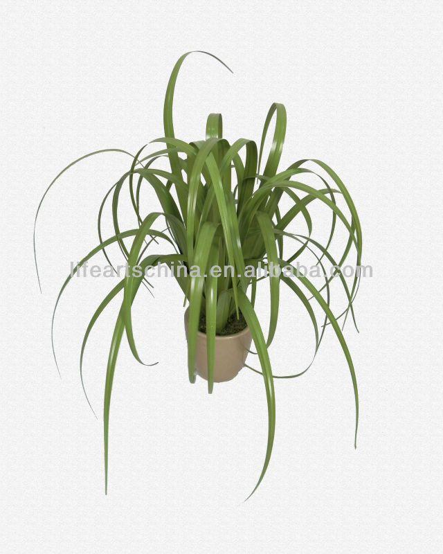 artificial grass, onion grass, lovely curly grass ...