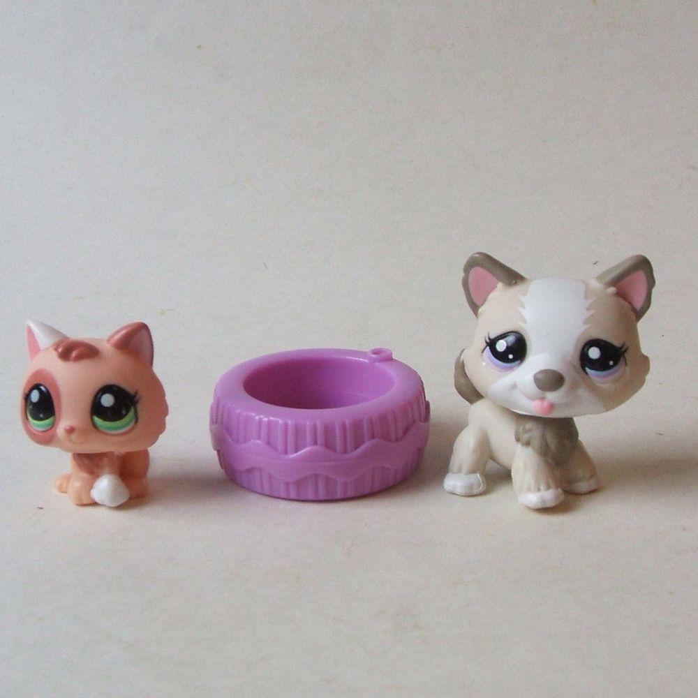 Roller skates for dogs - Hasbro Littlest Pet Shop Lps 1817 Husky Dog 1818 Peach Kitten With Purple Tire