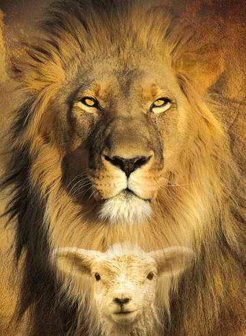 Isaiah 65:25 The wolf and the lamb shall graze together; the lion shall eat straw like the ox, and dust shall  be the serpent's… | Lion and lamb, Lion of judah, Lion