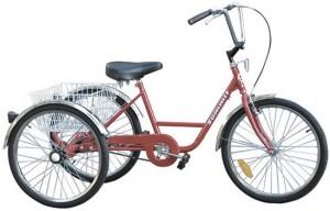 Teori Singkat Tentang Ragam Jenis Sepeda 3 Di 2020 Dengan Gambar