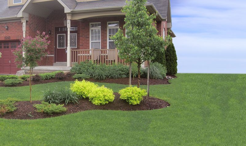 Brookfield Residential Bayberry Homes Treetops Community In Alliston Brookfield Residential Next At Home Landscape