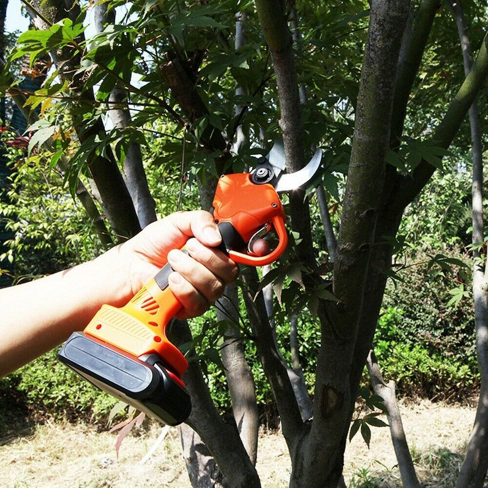 Branch Cutter Trimmer Electric Garden Pruning Shears Pruner Scissors Tools 30mm In 2020 Fruit Trees Tree Cutter Pruning Scissors