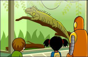 Brainpop Jr Classifying Animals Lesson Ideas