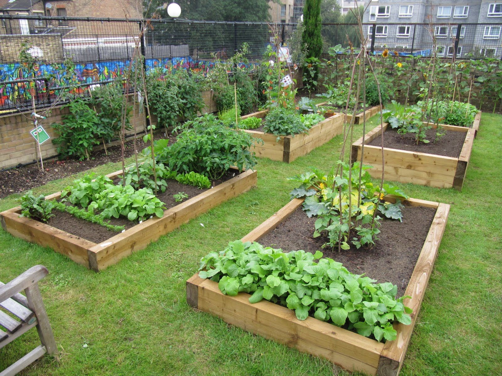 Raised Beds ガーデニング 庭 花壇