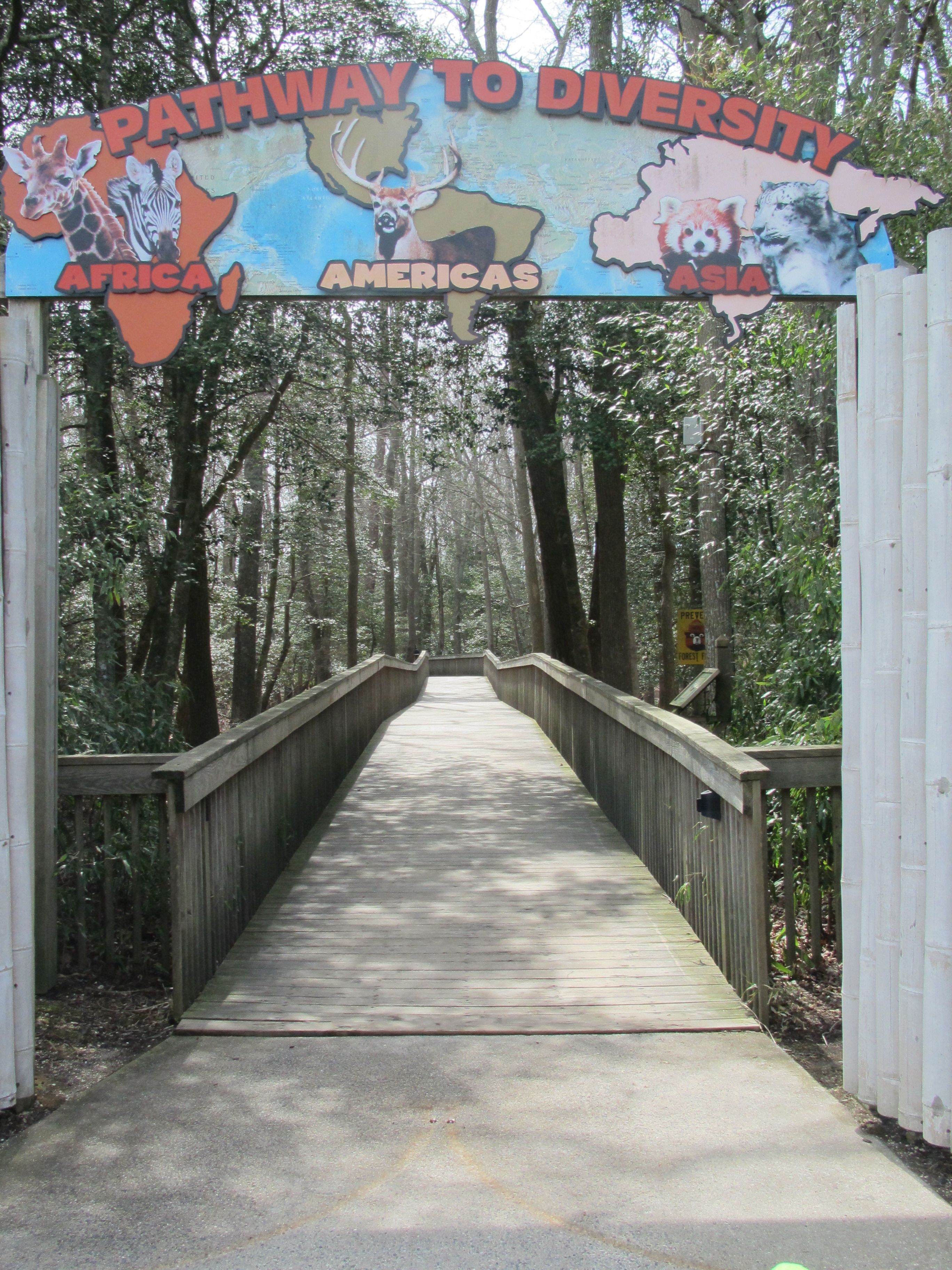 cape may county park & zoo   favorite places & spaces   pinterest