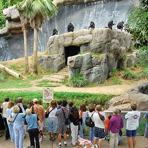 The Los Angeles Zoo And Botanical Gardens La Zoo Is A 133 Acre Zoo Founded In 1966 And Located In Los Angeles Ca Www Roma School Field Trip Field Trip Trip