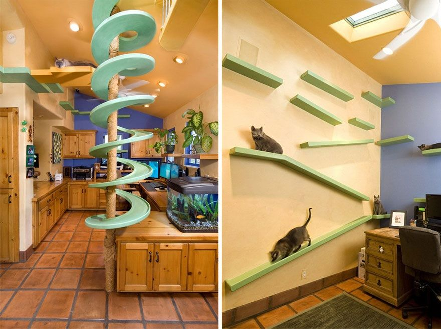 Wonderful 25 Really Cool Cat Furniture Design Ideas Every Cat Owner Needs
