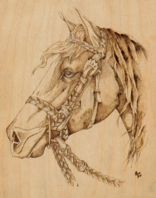 photo relating to Free Printable Pyrography Patterns titled 14 Ideal Woodburning Photos Deer, Pyrography And Firewood