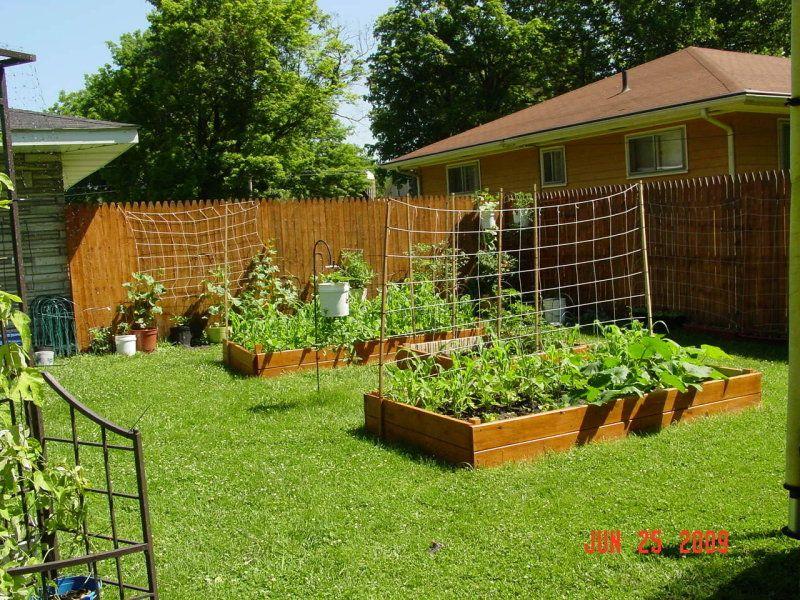 Simple raised beds for beginners. Vegetable garden