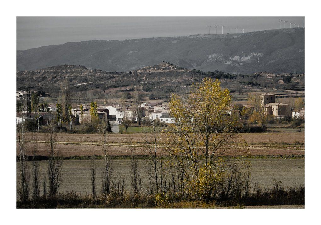Llano de Bureba (Burgos)