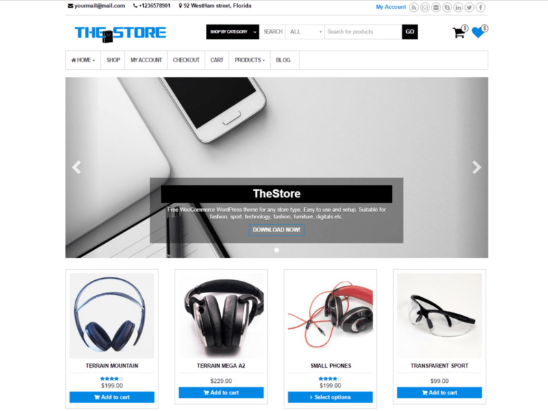 Download Free TheStore Wordpress theme