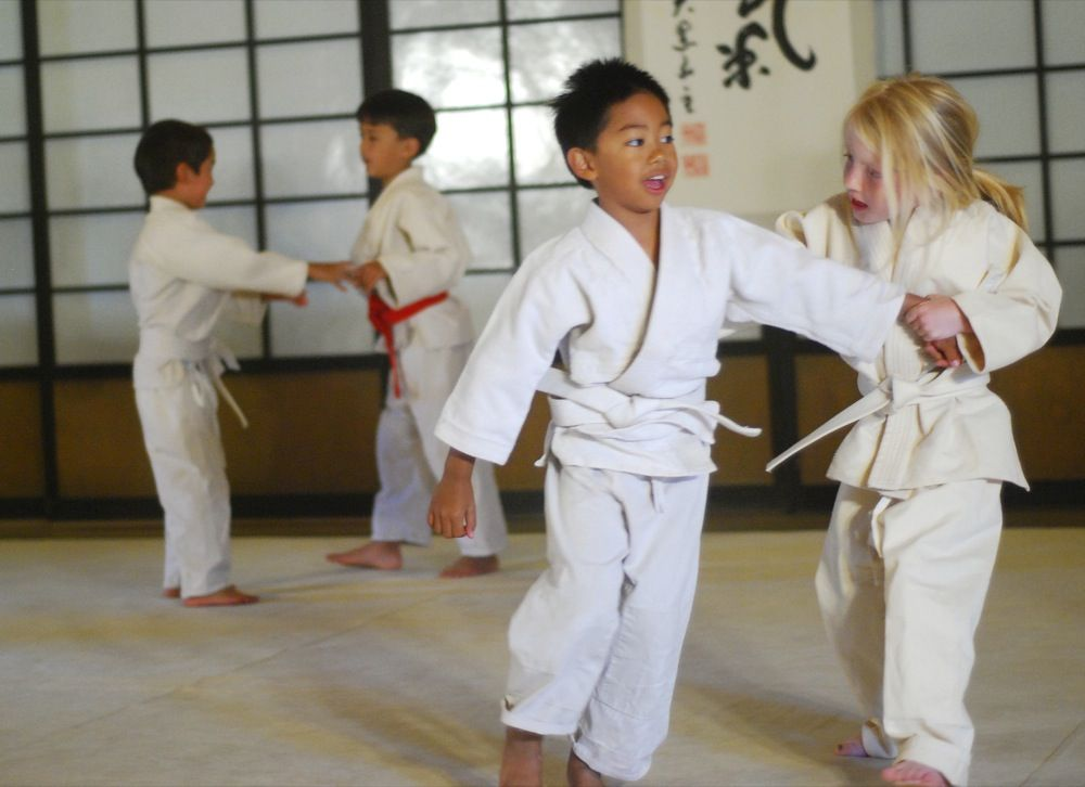 Which Martial Arts is Right for My Kid?