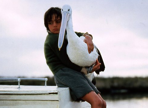 Watch Storm Boy Full-Movie Streaming