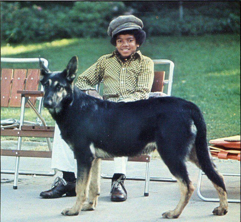 Catherine Ligon adlı kullanıcının Michael Jackson