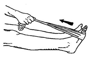 Running Stretches: Seated Calf Stretches With Towel #