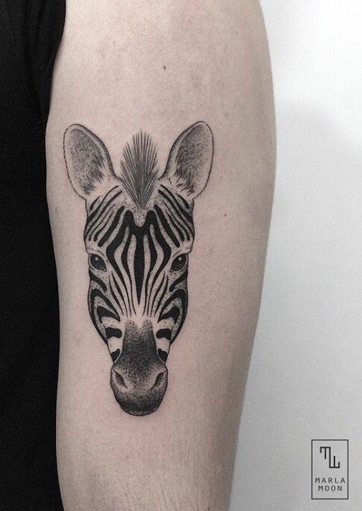 Marla Moon zebra tattoo Zebra Tattoos, Moon Tattoos, Animal Tattoos,  Tatoos, Tattoo