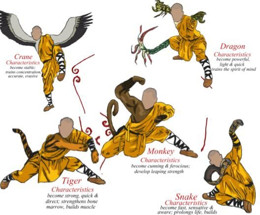 Learn Kung Fu in Dragon Mountain Martial Arts Academy in ...