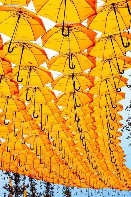 Regenschirm Umbrella Sonnenschirme Parasol Gelb Regenschirme Gelber Regenschirm