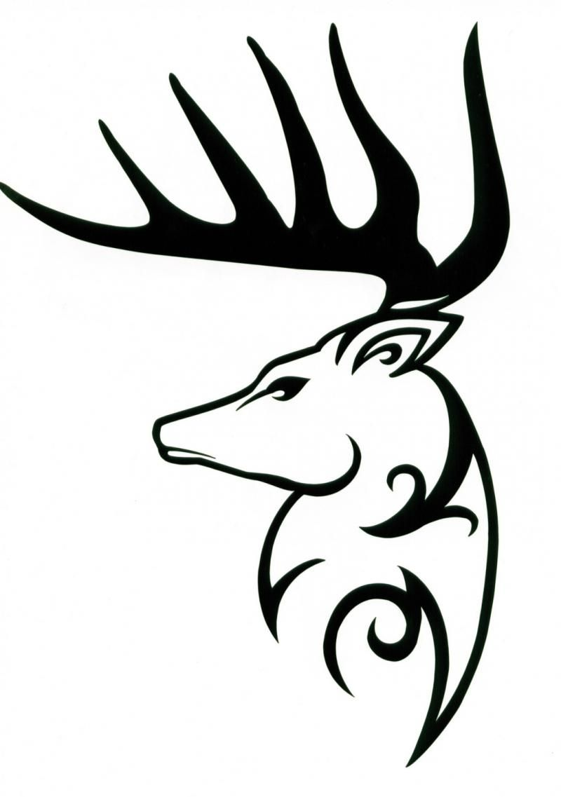 Unique Tribal Deer Tattoo Design Deer Skull Drawing Deer Tattoo Designs Deer Tattoo