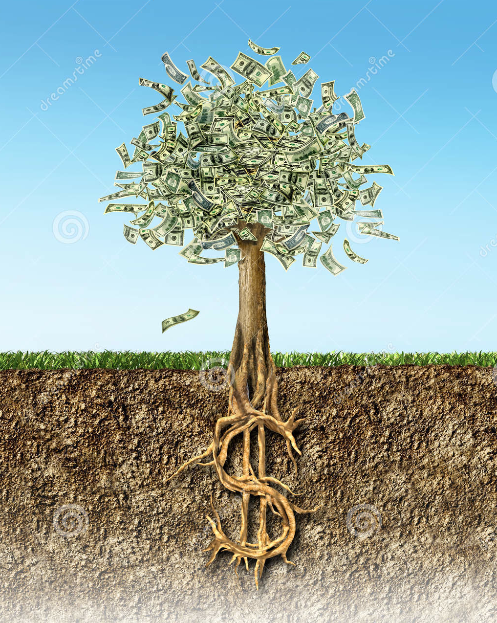 Money Tree With Roots | Goddess Allison's Divine Abundance | Home buying, Money trees, Home ...