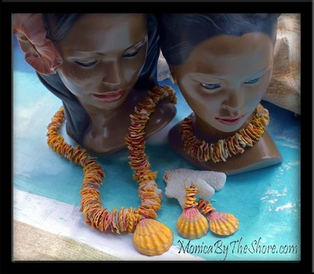 Sunrise Shells from Hawaii!!!!!