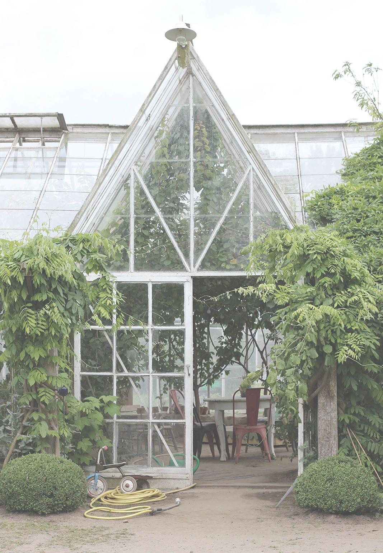 kär i mandelmanns trädgård utendørs pinterest green houses