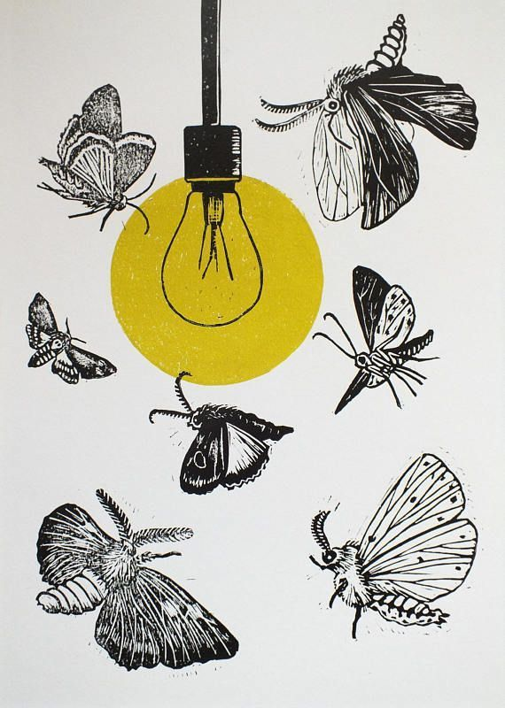 Moth lino print on paper 'Drawn to the Light' series, 2019 The sad folly of moths drawn to lights. Transverse Orientation. Does it reflect how our society follows the crowd without question and reason?  Confusion. Glimmer of hope. Or a dance of light that goes back since time immemorial... A series of prints about moths circling a lightbulb. Each one is totally unique in the placing and number of moths, style of lightbulb and colour of the light it emits, so essentially they are linocut monoprin #photographing