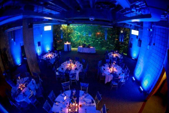 Florida Aquarium Reception