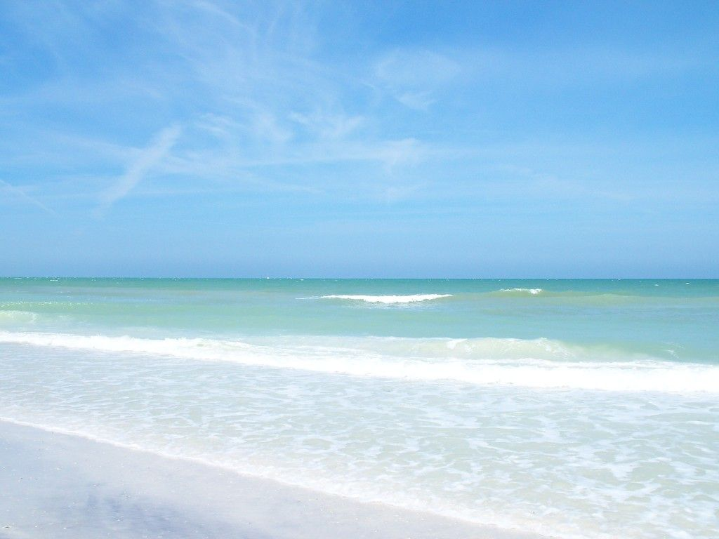 Clearwater Florida Please Enable Javascript To View The Comments Powered By Disqus
