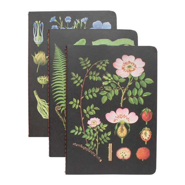 The Art Of Instruction Botanical Notebook Collection Bullet