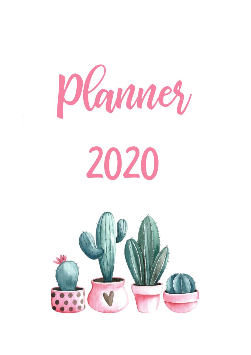 Calendario Rosa 2020.Planner 2020 Cactos Verde Rosa Digital Pdf Calendario