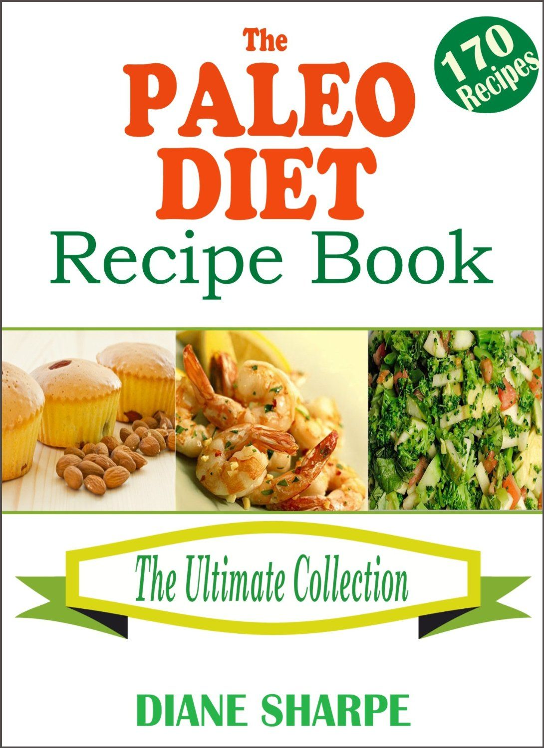 The paleo diet recipe book the big paleo cookbook 14 day meal plan the paleo diet recipe book the big paleo cookbook 14 day meal plan forumfinder