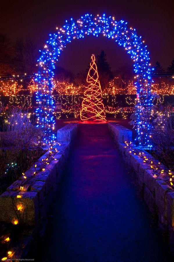 Lighted Arch Vandusen Botanical Garden Vancouver British Columbia Canada Outdoor Christmas Decorations Outdoor Christmas Christmas Decorations