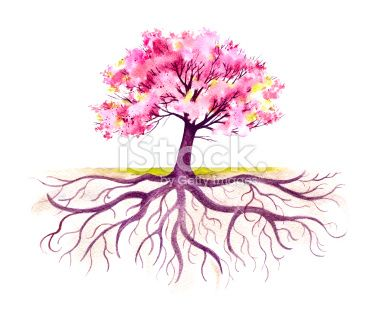 This Traditional Watercolor Of A Blooming Tree With It S Root System Autumn Trees Root System Roots Drawing