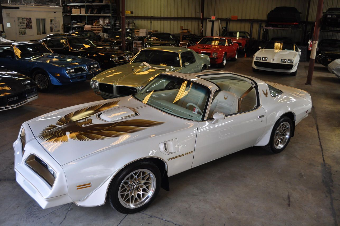 af6b4f38 TRANS AM SPECIALTIES OF FLORIDA … | Firebird | Class…