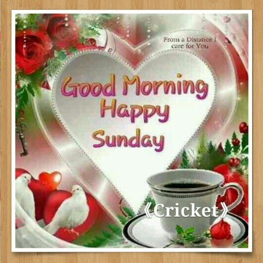 Good Morning Sunday Happy : Good morning happy sunday g mornin