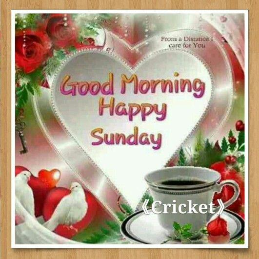 Good Morning Happy Sunday ♡