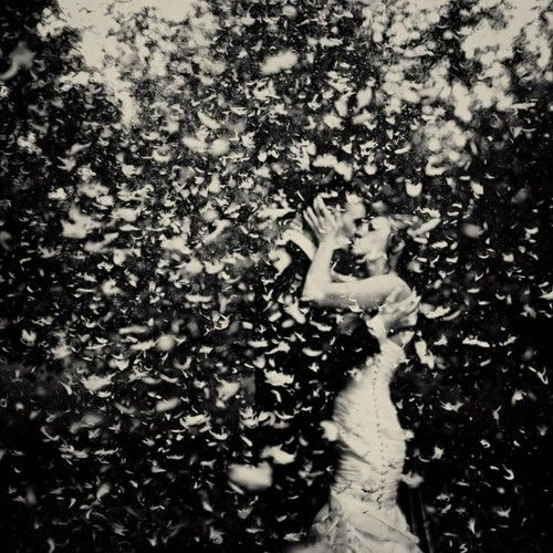 I really love the idea of throwing feathers instead of rose petals at the wedding after the couple marries. Throw a feather, make it last forever.