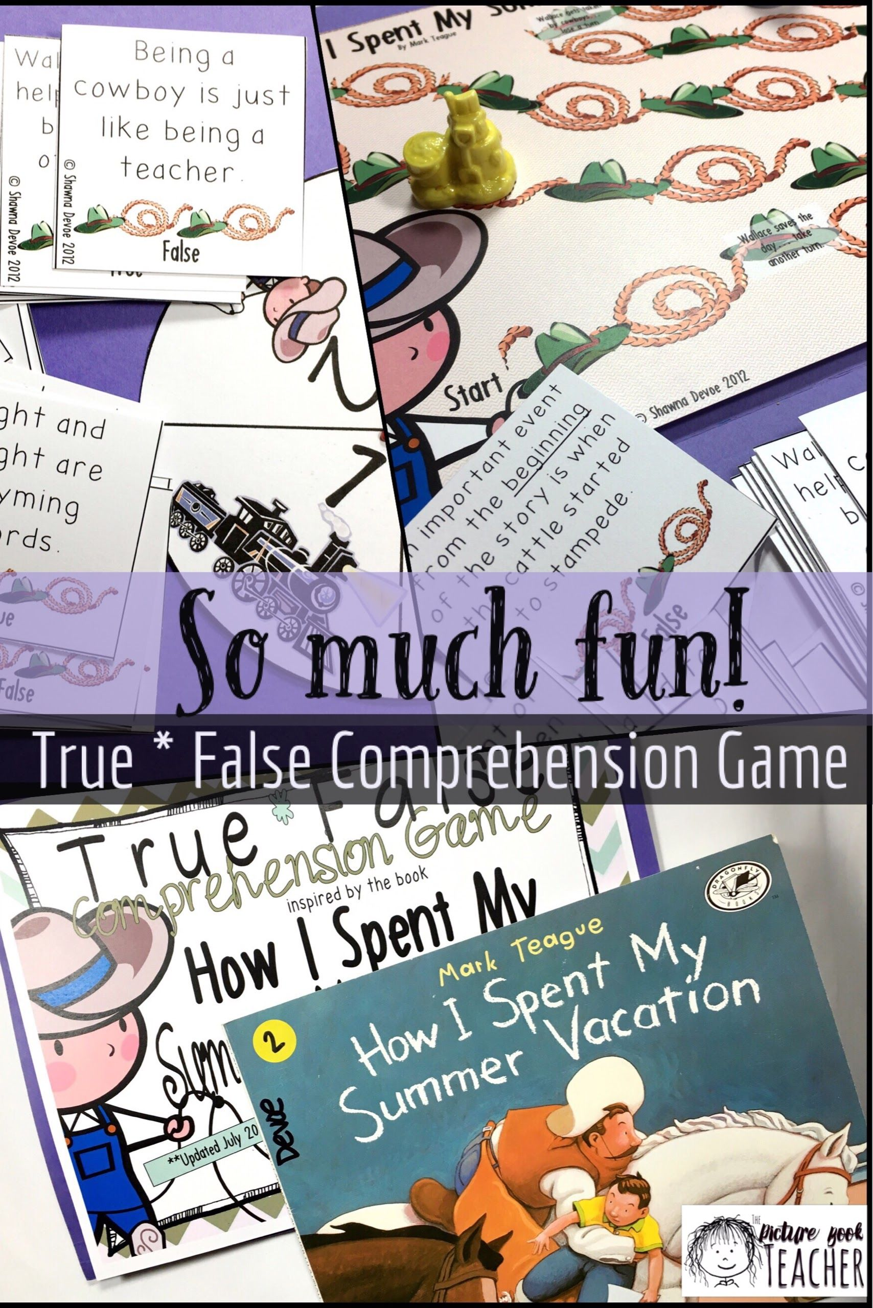 True False Game Inspired By How I Spent My Summer Vacation