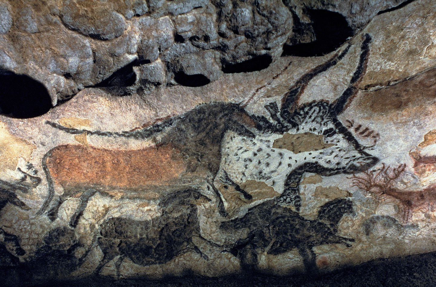 cave paintings in france - Google Search | Craft Rooms ...